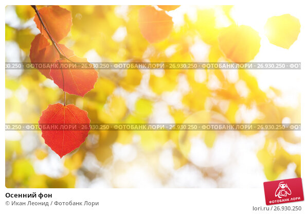 Осенний фон, фото № 26930250, снято 23 сентября 2016 г. (c) Икан Леонид / Фотобанк Лори