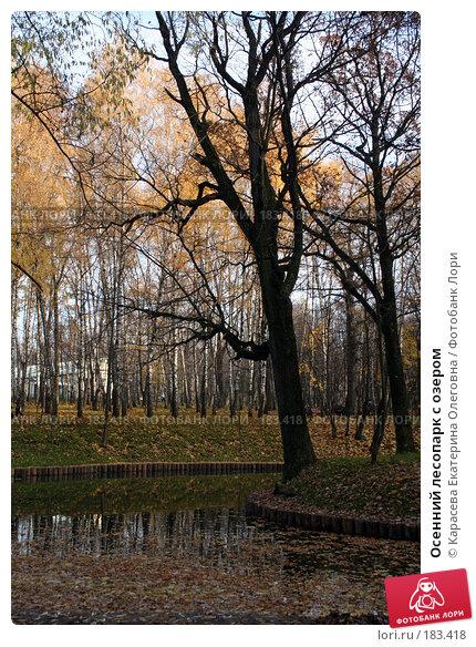 Осенний лесопарк с озером, фото № 183418, снято 28 октября 2007 г. (c) Карасева Екатерина Олеговна / Фотобанк Лори