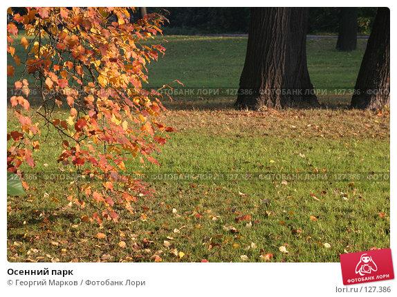Осенний парк, фото № 127386, снято 12 октября 2005 г. (c) Георгий Марков / Фотобанк Лори