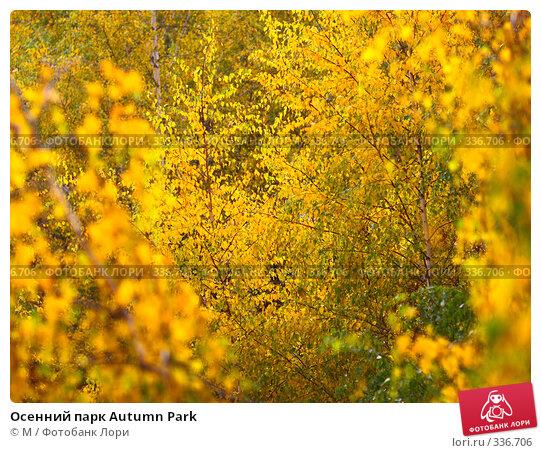 Купить «Осенний парк Autumn Park», фото № 336706, снято 24 марта 2018 г. (c) М / Фотобанк Лори