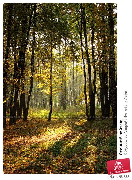 Осенний пейзаж, эксклюзивное фото № 95338, снято 26 сентября 2007 г. (c) Журавлев Андрей / Фотобанк Лори