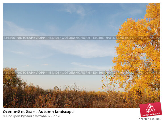 Купить «Осенний пейзаж.  Autumn landscape», фото № 134106, снято 5 октября 2007 г. (c) Насыров Руслан / Фотобанк Лори