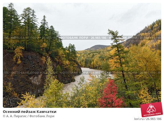 Купить «Осенний пейзаж Камчатки», фото № 26983186, снято 18 сентября 2013 г. (c) А. А. Пирагис / Фотобанк Лори