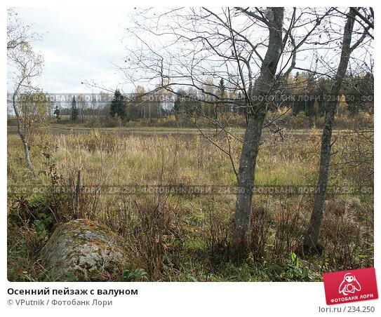 Осенний пейзаж с валуном, фото № 234250, снято 8 октября 2005 г. (c) VPutnik / Фотобанк Лори