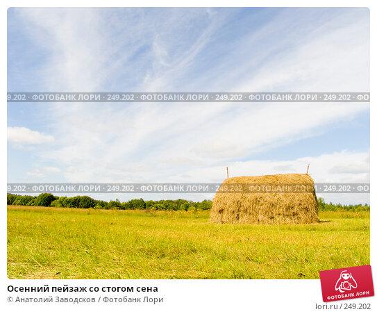 Осенний пейзаж со стогом сена, фото № 249202, снято 3 августа 2006 г. (c) Анатолий Заводсков / Фотобанк Лори
