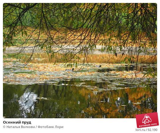 Осенний пруд, фото № 92190, снято 3 октября 2007 г. (c) Наталья Волкова / Фотобанк Лори