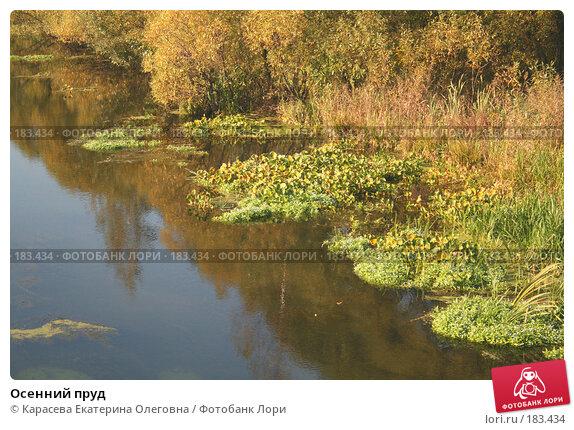 Осенний пруд, фото № 183434, снято 30 сентября 2007 г. (c) Карасева Екатерина Олеговна / Фотобанк Лори