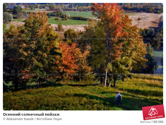 Осенний солнечный пейзаж, фото № 189586, снято 26 марта 2017 г. (c) Aleksander Kaasik / Фотобанк Лори