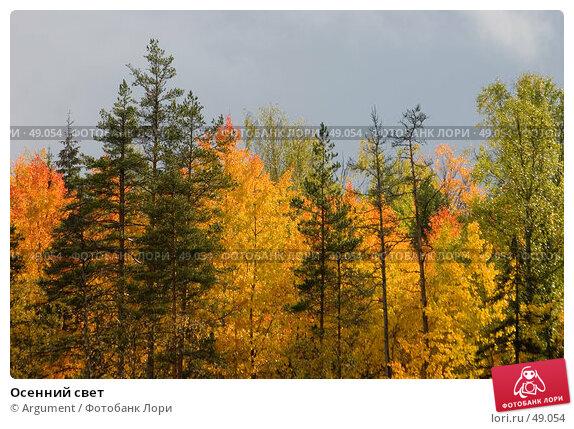 Осенний свет, фото № 49054, снято 6 октября 2006 г. (c) Argument / Фотобанк Лори