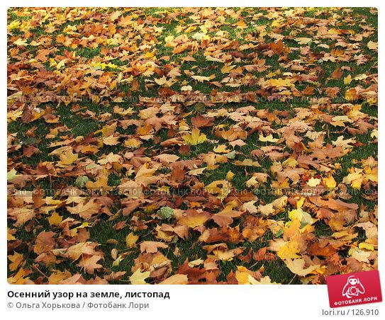 Осенний узор на земле, листопад, фото № 126910, снято 11 октября 2007 г. (c) Ольга Хорькова / Фотобанк Лори