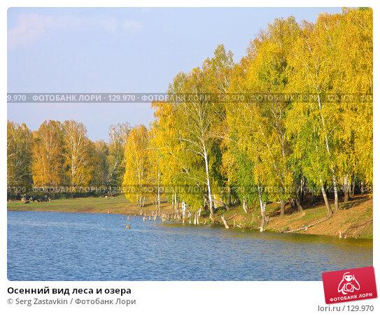 Осенний вид леса и озера, фото № 129970, снято 19 сентября 2004 г. (c) Serg Zastavkin / Фотобанк Лори