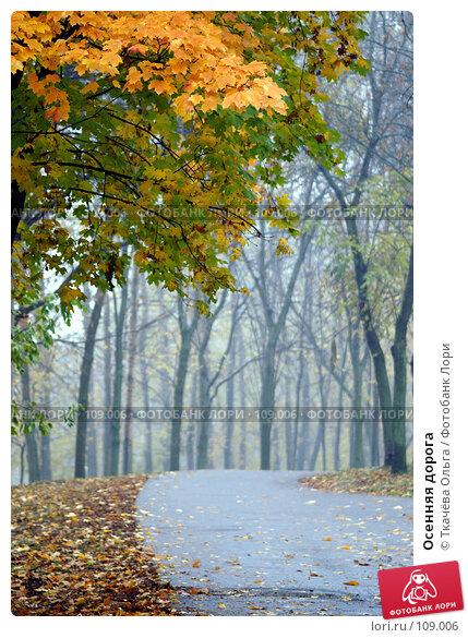Осенняя дорога, фото № 109006, снято 19 октября 2007 г. (c) Ткачёва Ольга / Фотобанк Лори