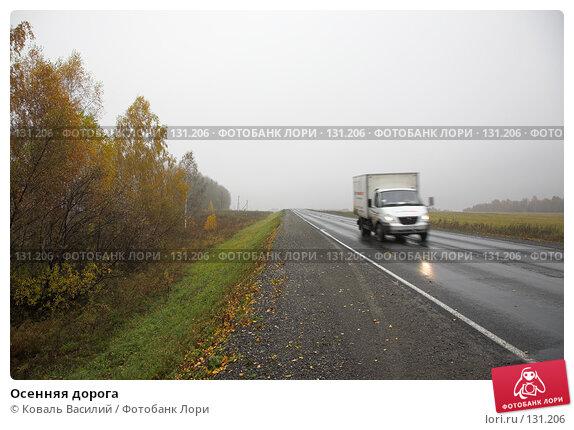 Осенняя дорога, фото № 131206, снято 8 октября 2007 г. (c) Коваль Василий / Фотобанк Лори