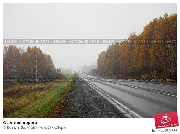 Осенняя дорога, фото № 230866, снято 8 октября 2007 г. (c) Коваль Василий / Фотобанк Лори