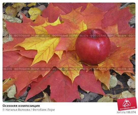 Осенняя композиция, эксклюзивное фото № 88074, снято 22 сентября 2007 г. (c) Наталья Волкова / Фотобанк Лори