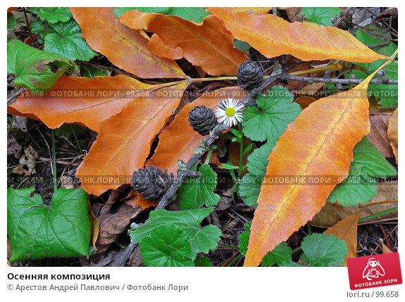 Осенняя композиция, фото № 99658, снято 13 октября 2007 г. (c) Арестов Андрей Павлович / Фотобанк Лори
