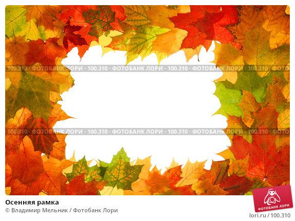 Осенняя рамка, фото № 100310, снято 4 октября 2007 г. (c) Владимир Мельник / Фотобанк Лори