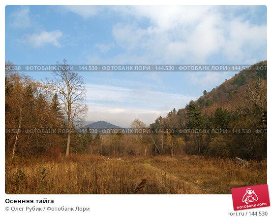 Купить «Осенняя тайга», фото № 144530, снято 16 октября 2007 г. (c) Олег Рубик / Фотобанк Лори