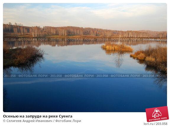Осенью на запруде на реке Суенга, фото № 203058, снято 13 октября 2007 г. (c) Селигеев Андрей Иванович / Фотобанк Лори