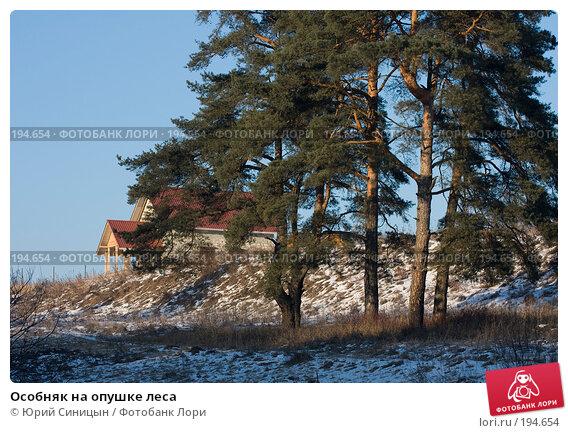 Особняк на опушке леса, фото № 194654, снято 8 января 2008 г. (c) Юрий Синицын / Фотобанк Лори
