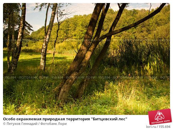 "Особо охраняемая природная территория ""Битцевский лес"", фото № 155694, снято 4 сентября 2007 г. (c) Петухов Геннадий / Фотобанк Лори"