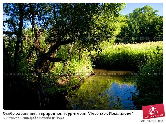 """Особо охраняемая природная территория """"Лесопарк Измайлово"""", фото № 156834, снято 15 июля 2007 г. (c) Петухов Геннадий / Фотобанк Лори"""