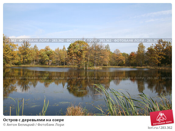 Остров с деревьями на озере, фото № 283362, снято 8 октября 2006 г. (c) Антон Белицкий / Фотобанк Лори