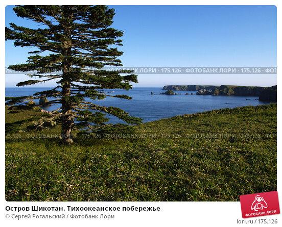 Остров Шикотан. Тихоокеанское побережье, фото № 175126, снято 24 мая 2017 г. (c) Сергей Рогальский / Фотобанк Лори