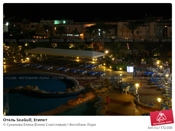 Отель SeaGull, Египет, фото № 172030, снято 16 ноября 2006 г. (c) Суханова Елена (Елена Счастливая) / Фотобанк Лори
