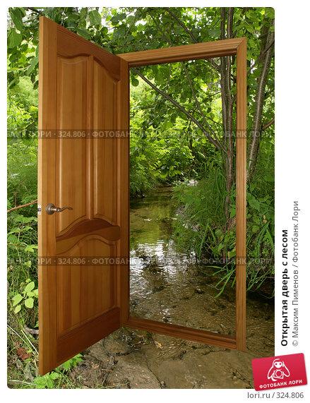 Открытая дверь с лесом, фото № 324806, снято 15 декабря 2006 г. (c) Максим Пименов / Фотобанк Лори