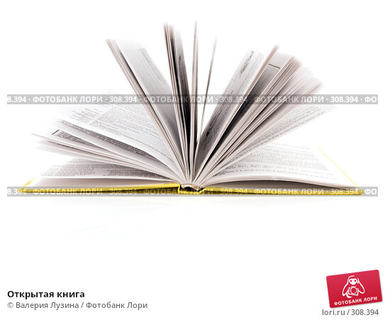Открытая книга, фото № 308394, снято 3 июня 2008 г. (c) Валерия Потапова / Фотобанк Лори
