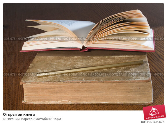 Открытая книга, фото № 308678, снято 3 июня 2008 г. (c) Евгений Мареев / Фотобанк Лори