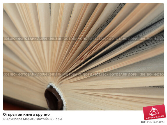 Открытая книга крупно, фото № 308890, снято 3 июня 2008 г. (c) Архипова Мария / Фотобанк Лори
