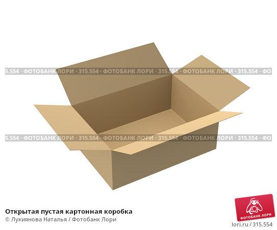 Купить «Открытая пустая картонная коробка», иллюстрация № 315554 (c) Лукиянова Наталья / Фотобанк Лори