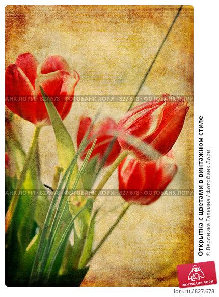 Купить «Открытка с цветами в винтажном стиле», фото № 827678, снято 10 марта 2008 г. (c) Вероника Галкина / Фотобанк Лори