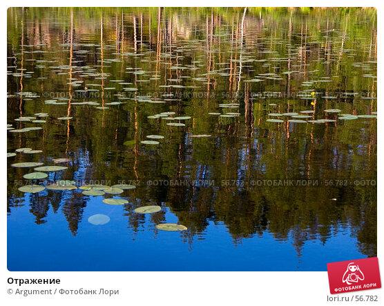 Отражение, фото № 56782, снято 3 августа 2006 г. (c) Argument / Фотобанк Лори