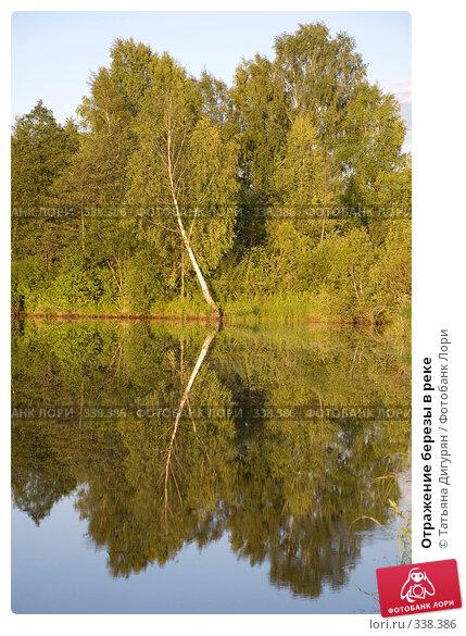 Отражение березы в реке, фото № 338386, снято 27 июня 2008 г. (c) Татьяна Дигурян / Фотобанк Лори
