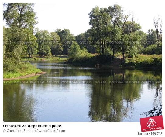 Отражение деревьев в реке, фото № 169718, снято 21 августа 2005 г. (c) Светлана Белова / Фотобанк Лори
