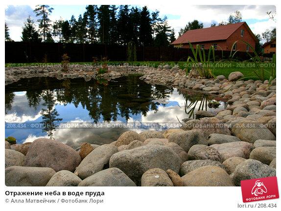 Купить «Отражение неба в воде пруда», фото № 208434, снято 8 сентября 2007 г. (c) Алла Матвейчик / Фотобанк Лори