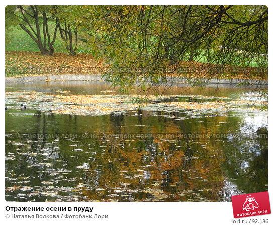 Отражение осени в пруду, фото № 92186, снято 3 октября 2007 г. (c) Наталья Волкова / Фотобанк Лори
