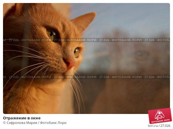Отражение в окне, фото № 27026, снято 6 ноября 2005 г. (c) Сафронова Мария / Фотобанк Лори