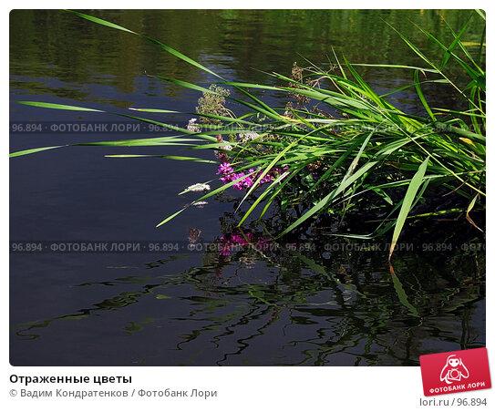 Купить «Отраженные цветы», фото № 96894, снято 13 декабря 2017 г. (c) Вадим Кондратенков / Фотобанк Лори