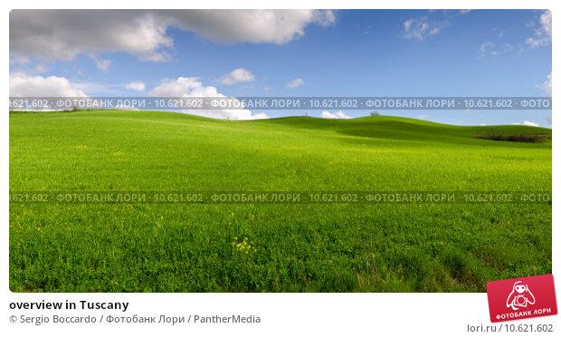 overview in Tuscany. Стоковое фото, фотограф Sergio Boccardo / PantherMedia / Фотобанк Лори