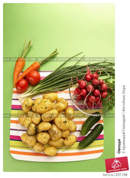 Овощи, фото № 257198, снято 17 июля 2005 г. (c) Кравецкий Геннадий / Фотобанк Лори