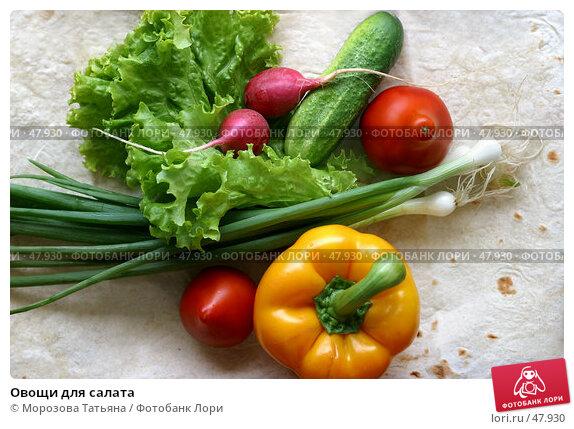 Купить «Овощи для салата», фото № 47930, снято 30 июня 2006 г. (c) Морозова Татьяна / Фотобанк Лори