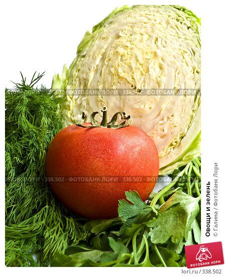 Купить «Овощи и зелень», фото № 338502, снято 21 апреля 2018 г. (c) Галина Щеглова / Фотобанк Лори