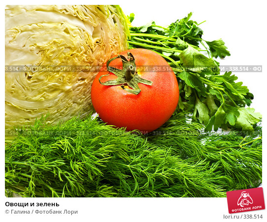 Овощи и зелень, фото № 338514, снято 27 июня 2008 г. (c) Галина Щеглова / Фотобанк Лори