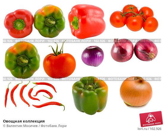 Овощная коллекция, фото № 102926, снято 24 мая 2017 г. (c) Валентин Мосичев / Фотобанк Лори