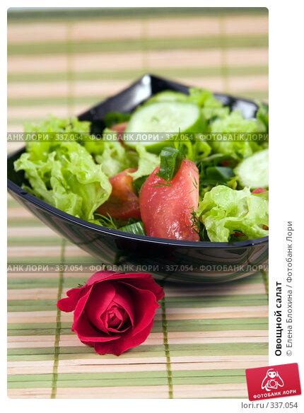 Овощной салат, фото № 337054, снято 24 июня 2008 г. (c) Елена Блохина / Фотобанк Лори