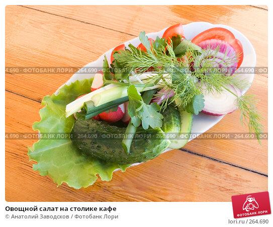 Овощной салат на столике кафе, фото № 264690, снято 12 мая 2007 г. (c) Анатолий Заводсков / Фотобанк Лори